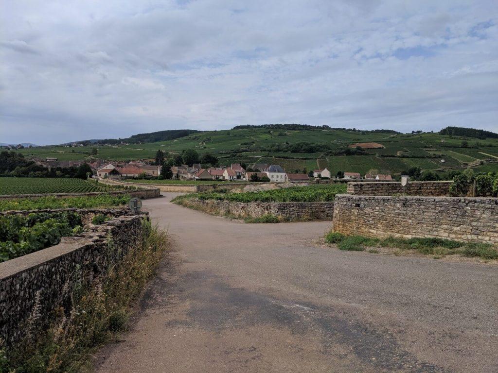 Hiking in Burgundy to Pommard