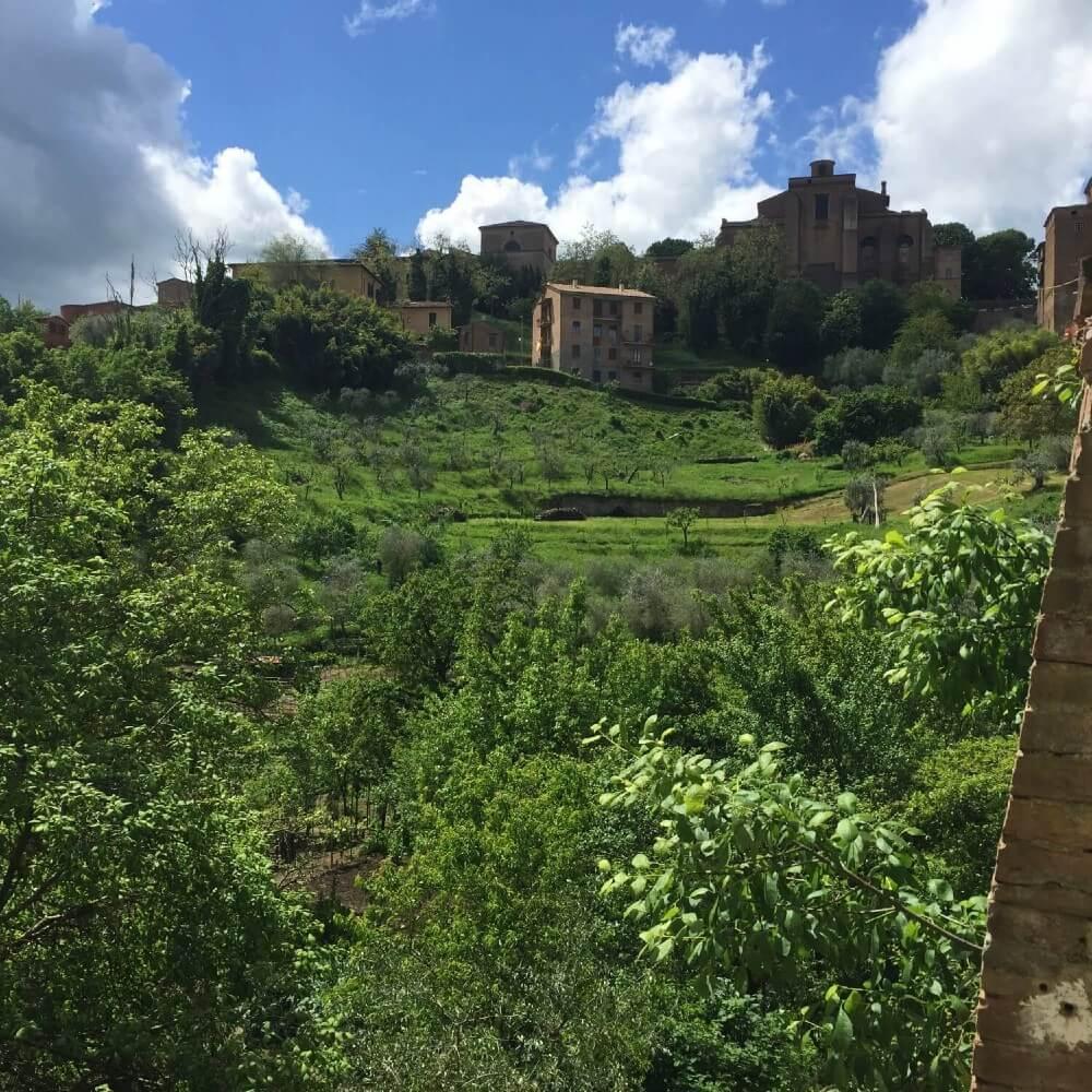Siena Italy Countryside