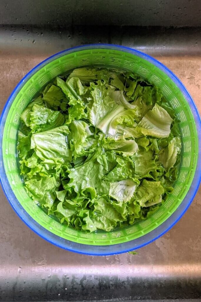 How to Use A Salad Spinner to Easily Clean Greens